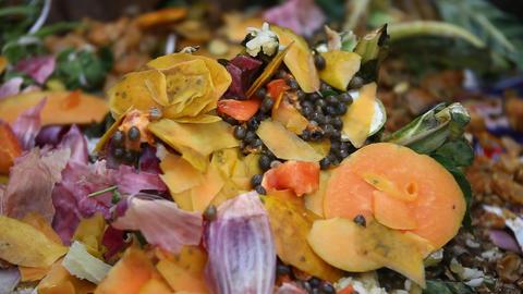 Fruits Garbage dump Footage