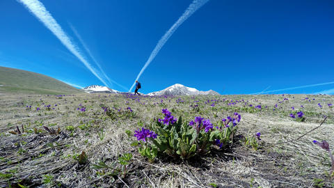 Hiking near the mountain Oshten. The Caucasian mountains. Russia Live Action