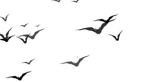 Swarm of bats flying across the screen. Spooky Halloween animated background. 4k Animation