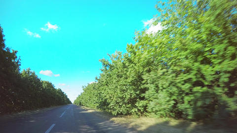 4K Hyperlapse drive on an old country road with a planting and with poor asphalt Footage