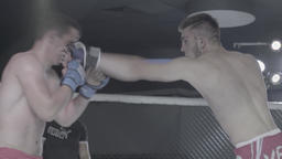 Fighters fight in the octagon . MMA Footage