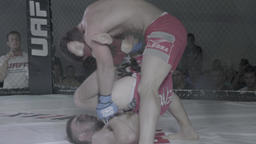 MMA. Fight in the cage (octagon) Footage