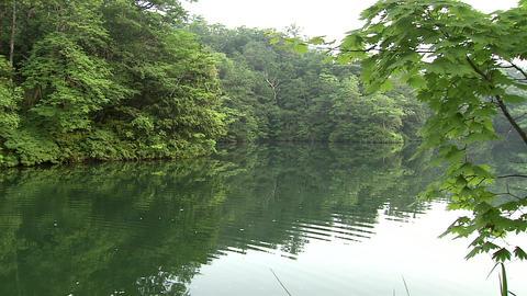 Hakkei Pond Live Action