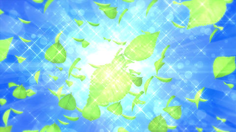 Scatter typeD leaf bgBlue h264 Animation