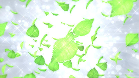 Scatter typeD leaf bgWhite h264 Animation