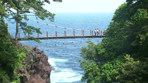 Jogasaki Coast Footage