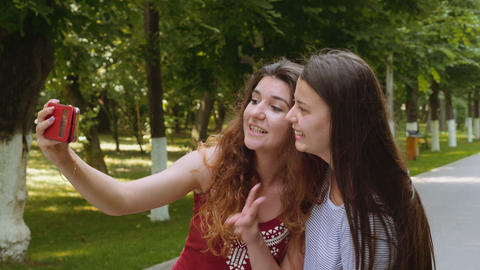 Happy friends taking selfie with the smartphone in the park Footage