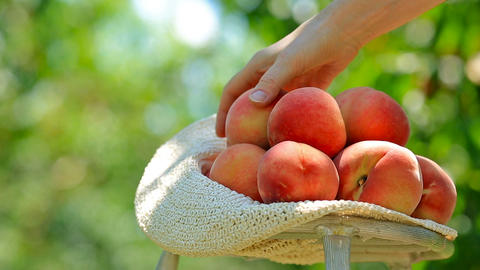 Ripe peaches Footage