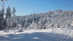 Christmas landscape in stock animation, Stock Animation