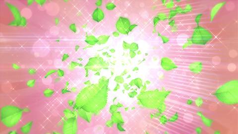 Scatter typeE leaf bgPink h264 Animation