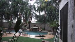 Establishing Shot of Residential Arizona Backyard Pool in a Monsoon Footage