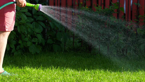 Manual garden sprayer