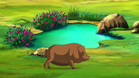 Little brown Piggy near a puddle Animation