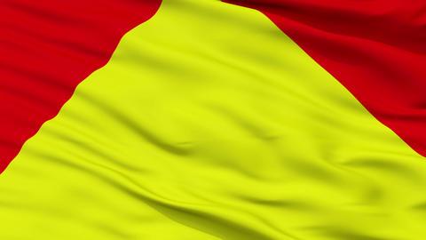 Principality of Trinidad Micronation Close Up Waving Flag Animation