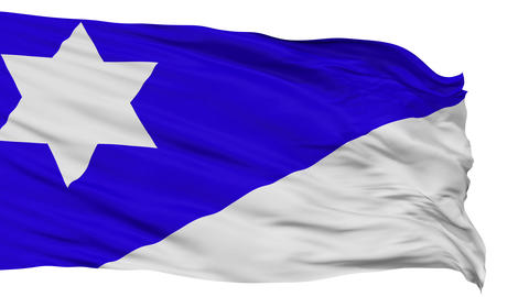 Branch Davidian Religious Isolated Waving Flag Animation