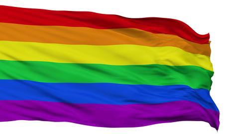 Gay Close Up Waving Flag Animation