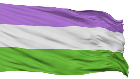 Genderqueer Pride Close Up Waving Flag Animation