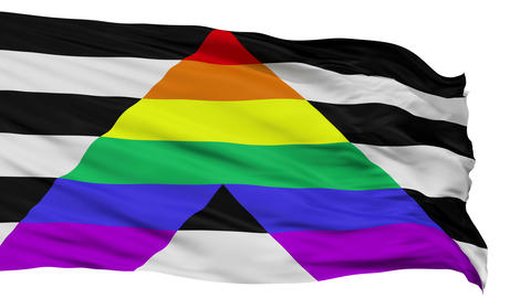 Straight Ally Close Up Waving Flag Animation