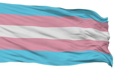 Transgender Pride Close Up Waving Flag Animation