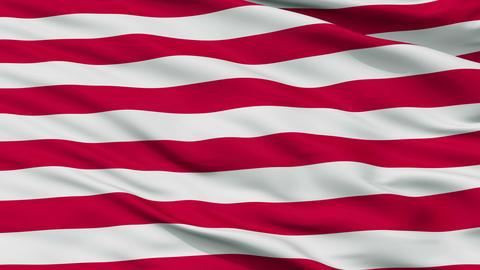 US Naval Jack Close Up Waving Flag Animation