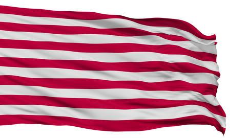US Naval Jack Isolated Waving Flag Animation