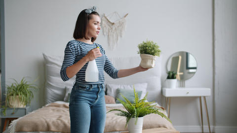 Beautiful young lady sprinkling water on green plants from spray bottle at home Footage