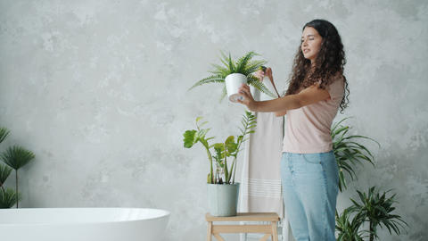 Pretty young lady spraying house plants in bathroom using spray bottle Live Action