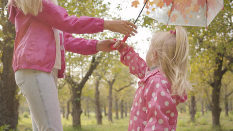 Close-up of a pretty blonde baby walking in the autumn forest with her elder Footage