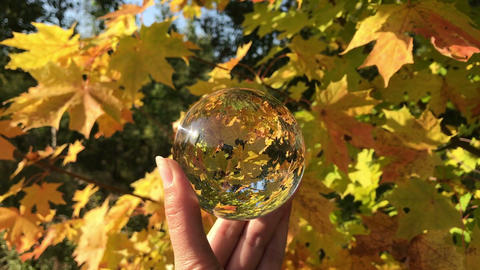 female hand holding magic crystall ball over beautiful nature landscape, autumn Live Action