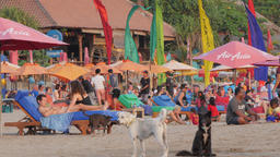 Colorful and busy beach restaurant with dogs,Kuta,Bali,Indonesia
