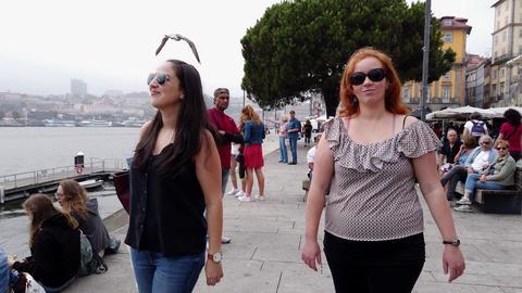 A walk through the historic district of Porto - CITY OF PORTO, PORTUGAL - Footage