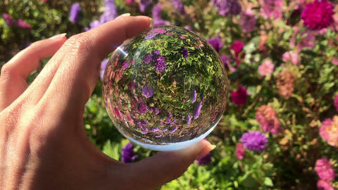 female hand holding magic crystall ball over beautiful nature landscape purple Live Action