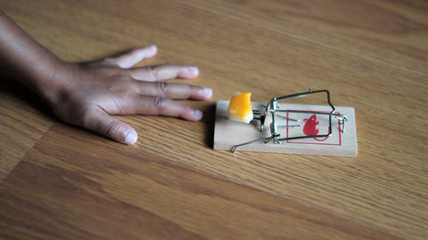 Little Girl Testing A Mouse Trap Footage