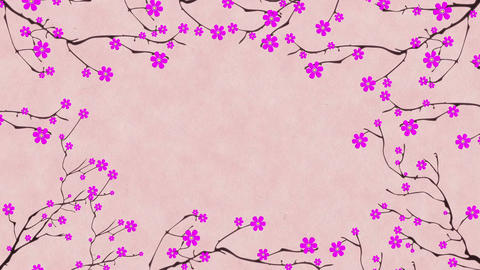 Cherry Blossoming 1 Animation