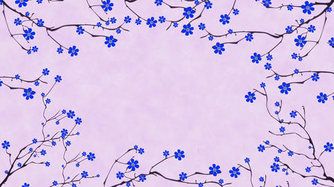 Cherry Blossoming 5 Stock Video Footage