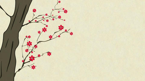 Cherry Blossoming 7 Animation