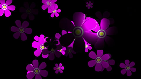 Flying Flowers 1 Stock Video Footage