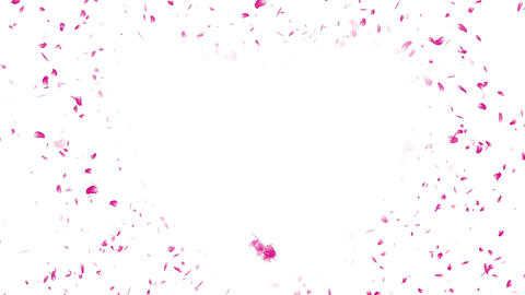 Heart Cherry Blossoms Pink 1 Stock Video Footage