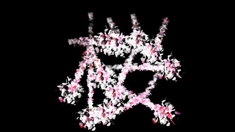 Sakura Cherry Blossoms Japanese 5 alpha Animation