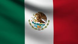 Mexico flag Animation