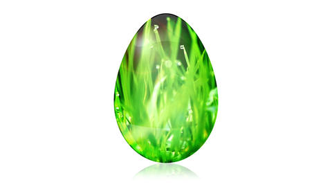 Glass Easter Egg with Grass Stock Video Footage