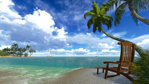 Palm trees and deckchair on a tropical beach Footage