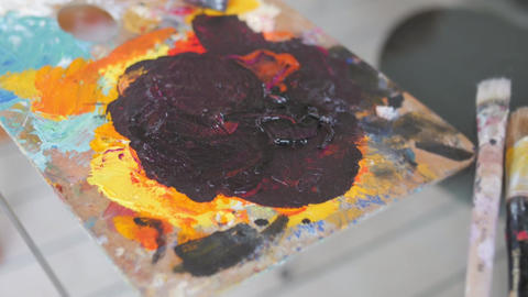 Custom Artists Painting Palette Close-up - Acrylic Paint Artist Footage