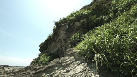 kenzaki seaside hill Live Action