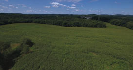 High Forward Aerial Fly Over Large Corn Fields in Western Pennsylvania Footage