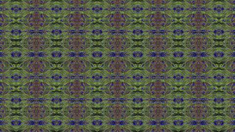 Vibrant vintage futuristic elegant iridescent matrix pattern Footage
