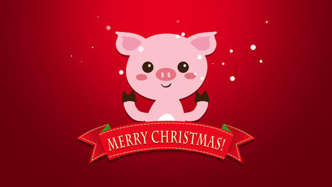 Animated closeup Merry Christmas text and funny pig Animation