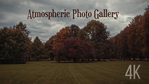 Atmospheric Photo Gallery 4K Premiere Pro Template