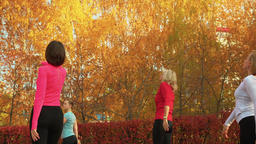 Woman group training port de bras exercise in autumn park. Female yoga Footage