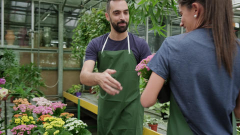 Team Work With Happy Colleagues Working In Florist Shop Footage